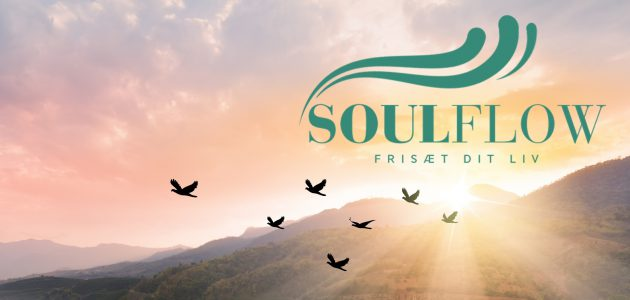 SoulFlow Banner